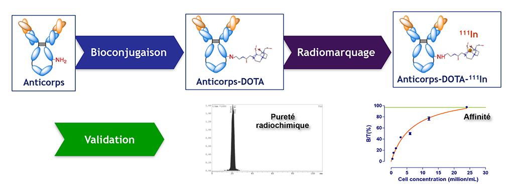 illu-plateformes-radiochimie-3